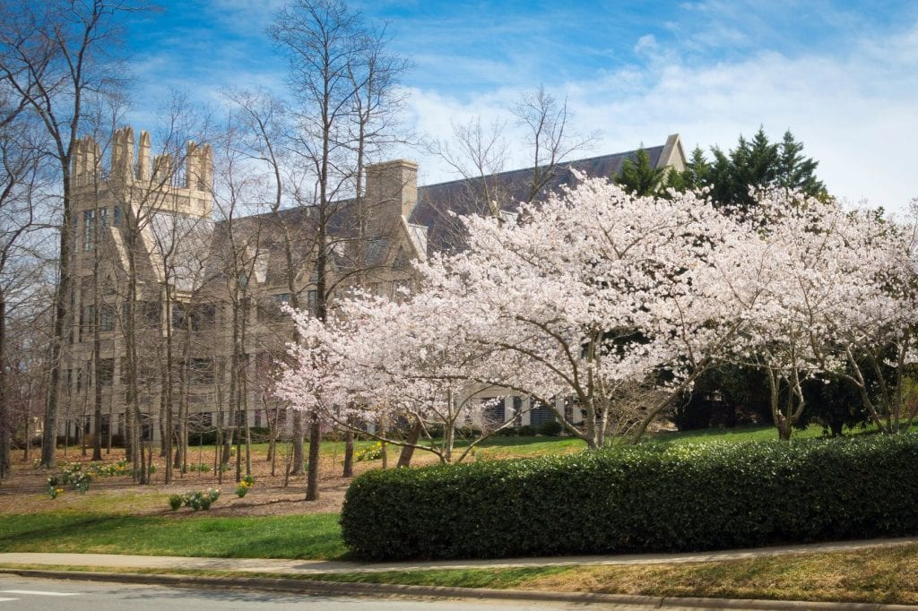 duke campus spring sanford school